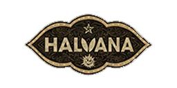Halvana logo