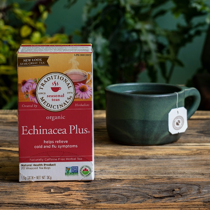美国Traditional Medicinals有机紫锥菊茶 添加接骨木 提升免疫力 预防感冒流感呼吸道感染